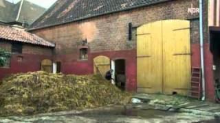 Download Hermann und das liebe Vieh Video