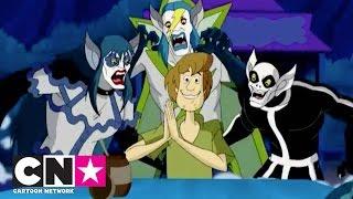 Download Scooby Doo Legend of Vampire | Vampirlerin Peşinde | Cartoon Network Türkiye Video