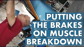 Download Putting the Brakes on Muscle Breakdown Video