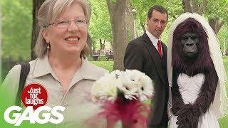 Download GORILLA Bride Prank   Throwback Thursday Video