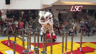 Download Genting Lion Dance | 2017 Central Region Champion Video