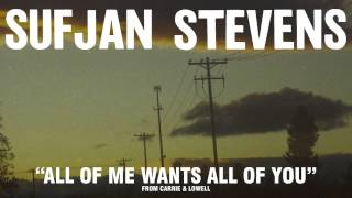 Download Sufjan Stevens, ″All Of Me Wants All Of You″ Video