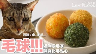 Download 毛球!!!換毛季推薦!幫助化毛的鮮食點心【好味貓廚房】EP92 Video