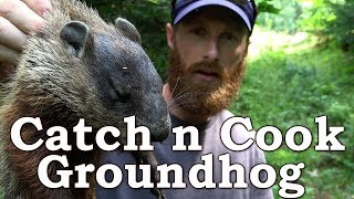 Download Catch n Cook Clean Groundhog   EATING THE SKIN?!?   The Wilderness Living Challenge 2017   S02E03 Video