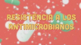 Download La agricultura en la prevención del desarrollo de la resistencia a los antimicrobianos Video
