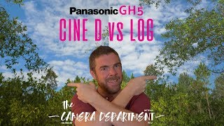 Download What's the deal with Cine D vs Log on the panasonic GH5? Prepare your Pixel Peepers Video
