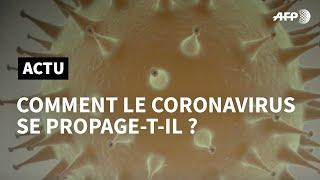 Download Nouveau coronavirus : comment se propage-t-il ?   AFP Animé Video