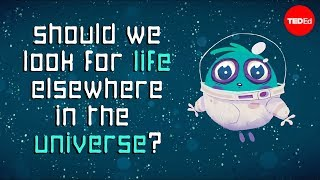 Download Should we be looking for life elsewhere in the universe? - Aomawa Shields Video