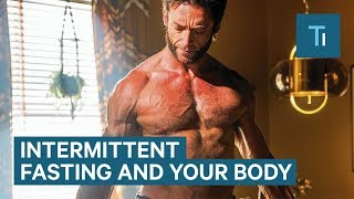 Download How Intermittent Fasting Affects Your Body and Brain | The Human Body Video