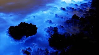 Download 5 Deep Sea Anomalies That Can't Be Explained! Video
