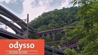 Download Was macht die Schweiz besser? | odysso - Wissen im SWR Video
