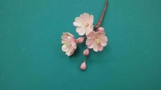 Download Creating a Cherry Blossom Out of Gumpaste (Part 1/2) Video