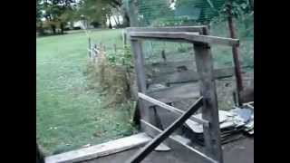 Download Mala farma prepelica , golubova i koka Video