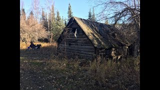 Download Metal detecting an old Alaskan gold rush cabin Video