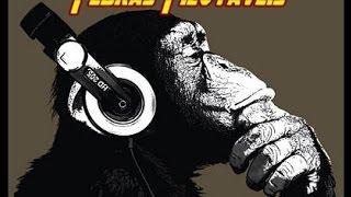 Download Banda Pedras Pilotáveis na Rádio Roquete Pinto FM 94.1 ao vivo no Programa Zoasom completo Video