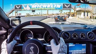 Download 17 Year Old SMACKS DOWN NEW FORD GT! (In A Shelby Mustang!) Video