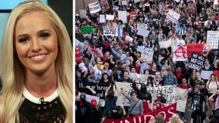 Download Tomi Lahren sounds off on Trump backlash on liberal campuses Video