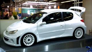 Download peugeot 207 tuning cars Video