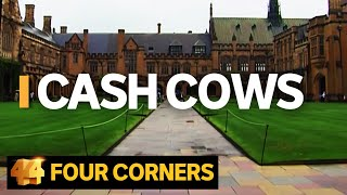 Download Cash Cows: Australian universities making billions out of international students | Four Corners Video