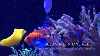 Download How To do Water Changes & Move Corals | Algae Scrubber & Lighting Video