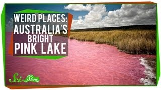 Download Weird Places: Australia's Bright Pink Lake Video