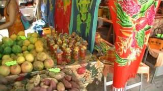 Download guadeloupe,marché produits du terroir:saint-anne, guadeloupe Video