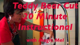 Download Teddy Bear Cut Video