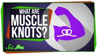 Download What Are Muscle Knots? Video