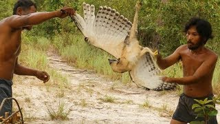 Download Effective Wooden Eagle Trap by Used Primitive Skills - How To Make Bird Trap 100% Video