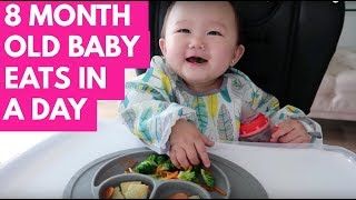 Download WHAT MY 8 MONTH OLD BABY EATS IN A DAY | BABY LED WEANING | INFANTINO SQUEEZE STATION Video