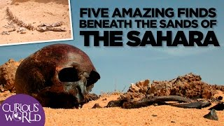 Download 5 Amazing Finds Beneath the Sands of the Sahara Video