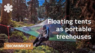 Download Tentsile tree tents: floating treehouses mimic spider webs Video
