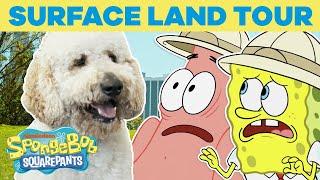 Download Surface Land Tour 🏝️ SPONGEBOB'S BIG BIRTHDAY BLOW OUT 🎉 SpongeBob Video