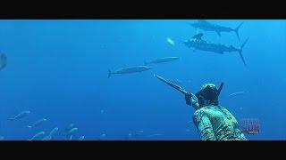 Download Pesca Sub, Spearfishing Wahoo, Diego Santiago Video