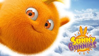 Download Funny Cartoons for Children | Sunny Bunnies - POWER OF THE BUNNIES | Cartoons For Children Video