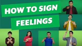 Download The Sign Language Dictionary: Feelings Video