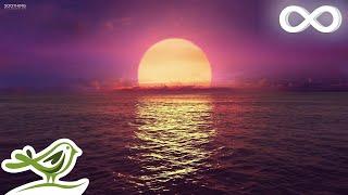 Download 8 Hours of Relaxing Sleep Music: Ocean Waves, Relaxing Music, Sleeping Music, Calming Music ★146 Video
