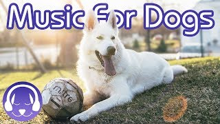 Download How to Relax Your Dog - 15 Hours of Deep Relaxation Music for Dogs! (2019!) Video