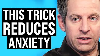 Download How to Instantly Achieve a Calm State | Sam Harris on Impact Theory Video