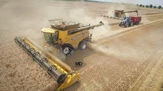 Download XL New Holland Harvest | 2X CR10.90 Revelation | 24m Video