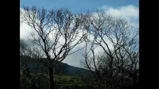 Download Beautiful landscape of County Mayo, Ireland Video