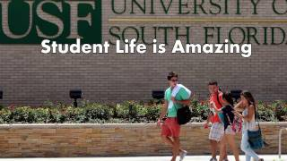 Download University of South Florida Tampa - 5 Things I Wish I Knew Before Attending Video