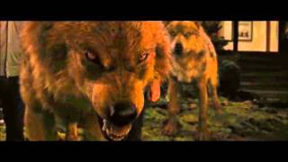 Download Twilight wolf scenes Video