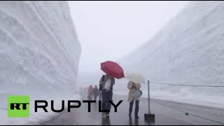 Download 'Snow Wall' phenomenon in Japan (drone footage) Video