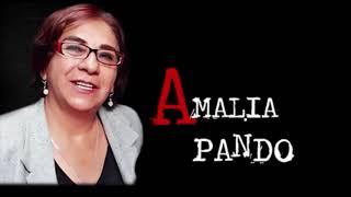 Download Amalia Pando|Descarrilado el bioceánico de Evo Video