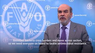 Download FAO Director-General video message on steps in tackling antimicrobial resistance Video