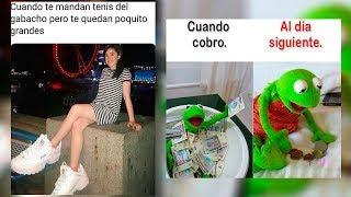 Download Memazos Random De Internet, Los Memes Virales Más Chistosos Del Momento Video