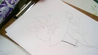 Como Calcar El Dibujo En La Tela Pa Free Download Video Mp4 3gp M4a