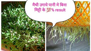 Download मैथी उगाये पानी मे बिना मिट्टी के 6,7 दिन मे ताजी मैथी तैयार...How to grow Methi in water Video