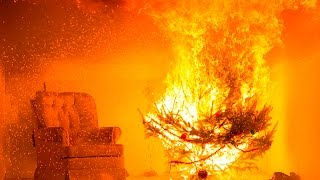 Download Avoid a Holiday Hazard: WPI Demonstrates Christmas Tree Safety with a Live Burn Video